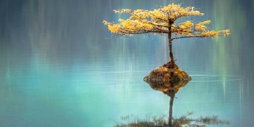 Foro filosofia de oriente para occidentales China y el taoísmo - Revista Esfinge